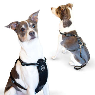 K and H Pet Products Travel Safety Pet Harness