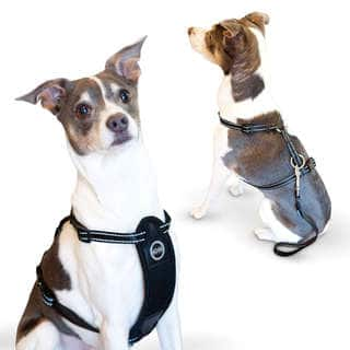 K and H Pet Products Travel Safety Pet Harness|https://ak1.ostkcdn.com/images/products/10459115/P17550993.jpg?impolicy=medium