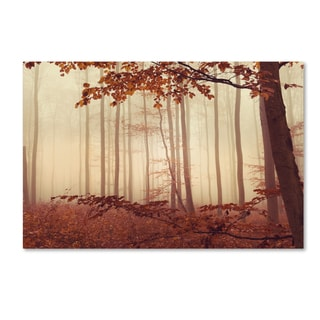 Philippe Sainte-Laudy 'The Last of Fall' Canvas Art