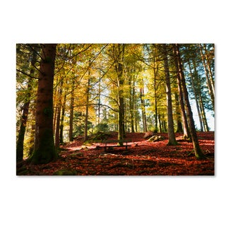 Philippe Sainte-Laudy 'The Autumn Bench' Canvas Art