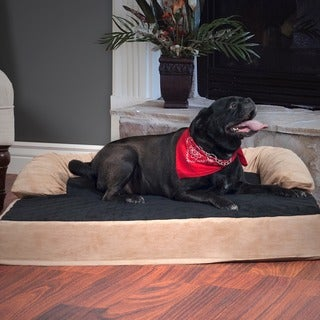 PAW Orthopedic Memory and Orthopedic 5-inch Foam Pet Bed with Bolster