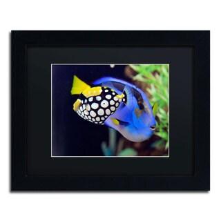 Kurt Shaffer 'Colorful Tropical Fish' Black Matte, Black Framed Wall Art