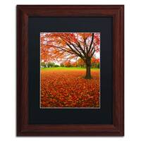 CATeyes 'Autumn Expressions' Black Matte, Wood Framed Wall Art