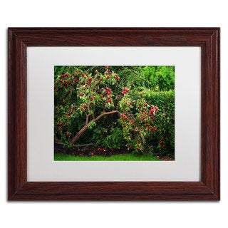 Philippe Sainte-Laudy 'The Apple Tree' White Matte, Wood Framed Wall Art