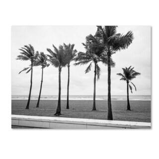 Preston 'Florida BW Beach Palms' Canvas Art