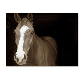 Preston 'Horse Portrait' Canvas Art