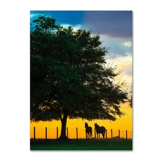 Preston 'Horse Sunset' Canvas Art