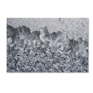 Kurt Shaffer 'Frost Mosaic 2' Canvas Art