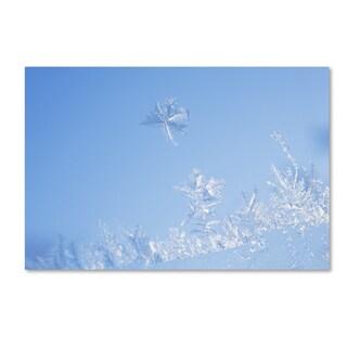 Kurt Shaffer 'Window Frost' Canvas Art