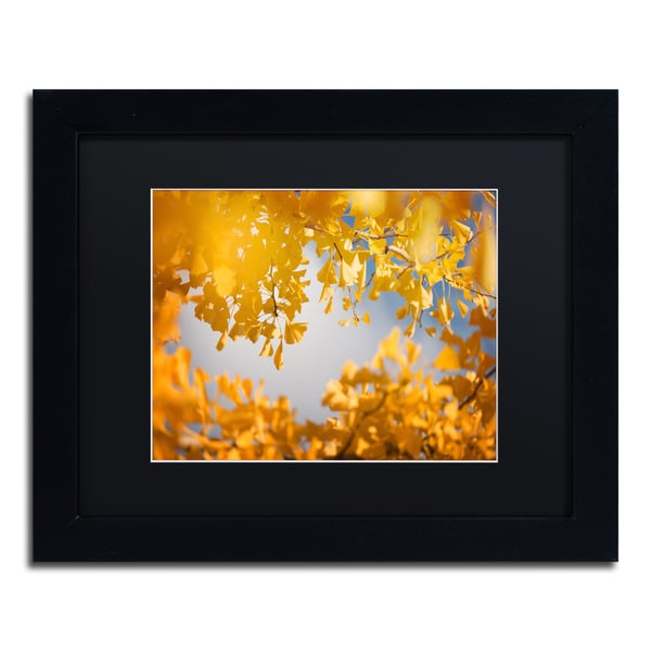 Philippe Sainte-Laudy \'Ginkgophytes\' Black Matte, Black Framed Wall ...
