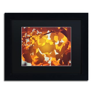 Philippe Sainte-Laudy 'Ginkgo Leaves' Black Matte, Black Framed Wall Art