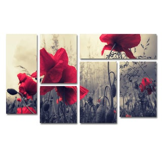Philippe Sainte-Laudy 'Red For Love' 6 Panel Art Set