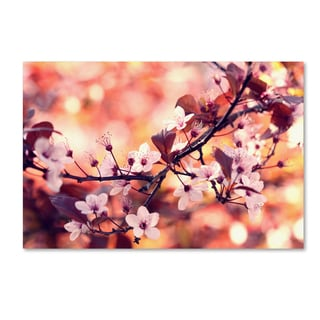 Beata Czyzowska Young 'Colours of Springtime' Canvas Art