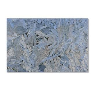 Kurt Shaffer 'Frost Pattern #6' Canvas Art