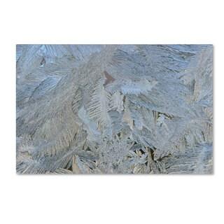 Kurt Shaffer 'Frost Pattern #5' Canvas Art