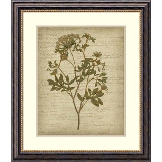 Jennifer Goldberger 'Romantic Pressed Flowers IV' Framed Art Print 26 x 30-inch