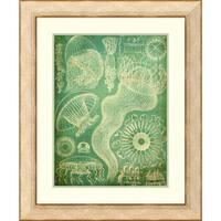 Framed Art Print 'Sealife I' by John Butler 29 x 35-inch