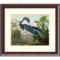 Framed Art Print 'Louisiana Heron, from 'Birds of America', engraved by Robert Havell, 1834' by John James Audubon 25 x 22-inch