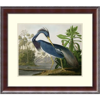 Framed Art Print 'Louisiana Heron, from 'Birds of America', engraved by Robert Havell, 1834' by John James Audubon 25 x 22-inch