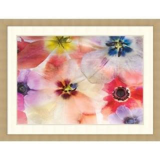 Harold Davis 'Natures Palette' Framed Art Print 43 x 33-inch