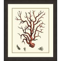 Framed Art Print 'Red Coral I' by Vision Studio 35 x 40-inch
