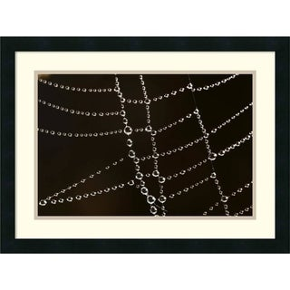Cyril Ruoso 'Spider Web with Beads of Dew, France' Framed Art Print 24 x 18-inch