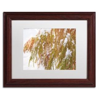 Kurt Shaffer 'Winter on Redwood' White Matte, Wood Framed Wall Art