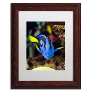 Kurt Shaffer 'Parrot Fish' White Matte, Wood Framed Wall Art
