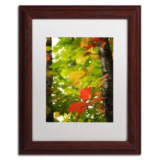 Philippe Sainte-Laudy 'Oak Leaves' White Matte, Wood Framed Wall Art