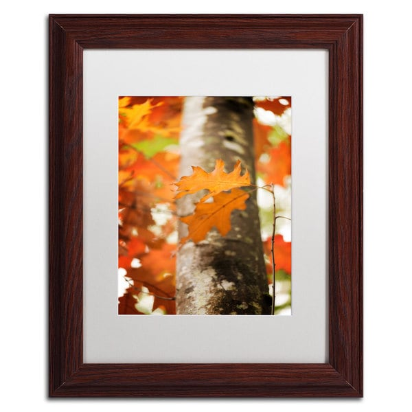Philippe Sainte-Laudy 'Oak in Autumn' White Matte, Wood Framed Wall Art