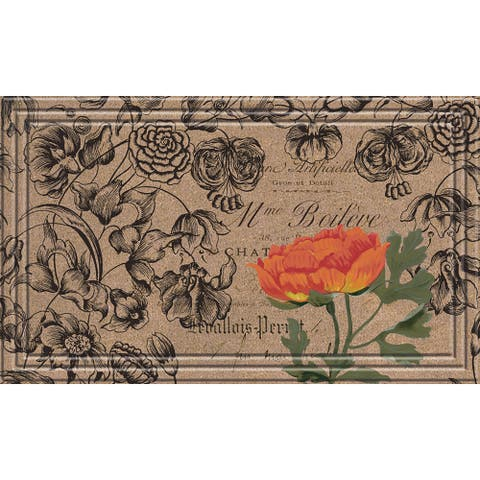 Indoor/Outdoor Vintage Floral Peony Doormat (18x30)