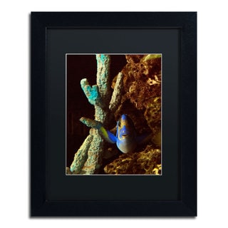 Kurt Shaffer 'Fish in the Rocks' Black Matte, Black Framed Wall Art