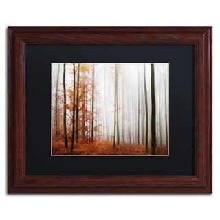 Philippe Sainte-Laudy 'Forest Corner' Black Matte, Wood Framed Wall Art