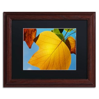 Philippe Sainte-Laudy 'Piece Fall' Black Matte, Wood Framed Wall Art