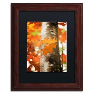 Philippe Sainte-Laudy 'Oak in Autumn' Black Matte, Wood Framed Wall Art