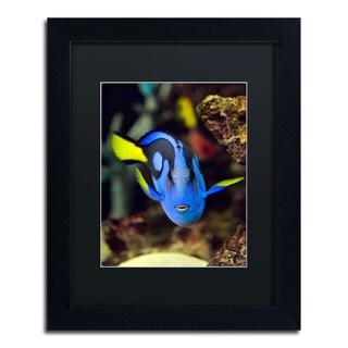 Kurt Shaffer 'Parrot Fish' Black Matte, Black Framed Wall Art