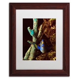 Kurt Shaffer 'Fish in the Rocks' White Matte, Wood Framed Wall Art