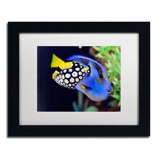 Kurt Shaffer 'Colorful Tropical Fish' White Matte, Black Framed Wall Art