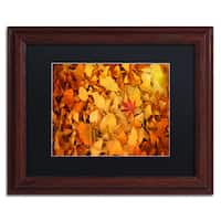 Philippe Sainte-Laudy 'Variegated' Black Matte, Wood Framed Wall Art