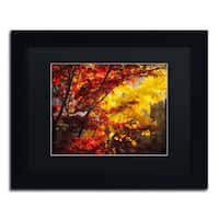 Philippe Sainte-Laudy 'Transits' Black Matte, Black Framed Wall Art