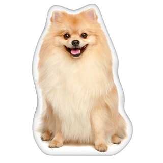 Pomeranian Accent Pillow
