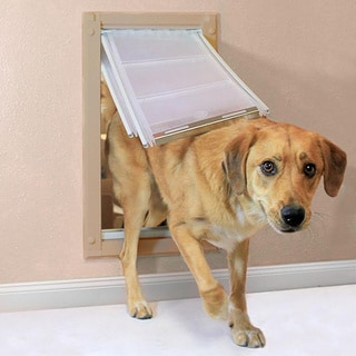 Endura Flap Double Flap Pet Door for Walls Plus $20 Mail-In Rebate