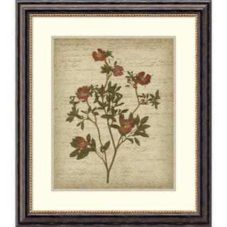 Jennifer Goldberger 'Romantic Pressed Flowers I' Framed Art Print 26 x 30-inch