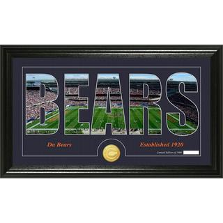 Chicago Bears 'Silhouette' Bronze Coin Panoramic Photo Mint
