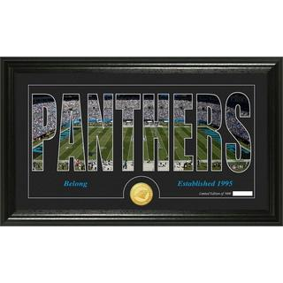 Carolina Panthers 'Silhouette' Bronze Coin Panoramic Photo Mint