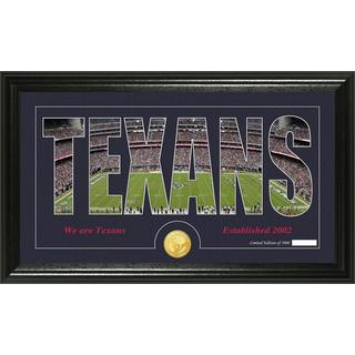 Houston Texans 'Silhouette' Bronze Coin Panoramic Photo Mint