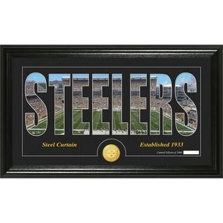 Pittsburgh Steelers 'Silhouette' Bronze Coin Panoramic Photo Mint