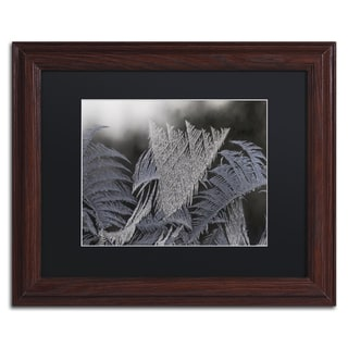 Kurt Shaffer 'Frost on my Window' Black Matte, Wood Framed Wall Art