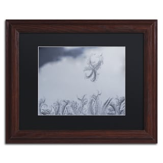 Kurt Shaffer 'Frost Fairy on a Window' Black Matte, Wood Framed Wall Art
