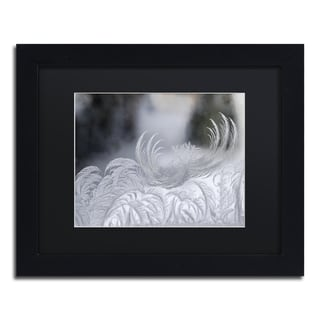 Kurt Shaffer 'February Window Frost' Black Matte, Black Framed Wall Art
